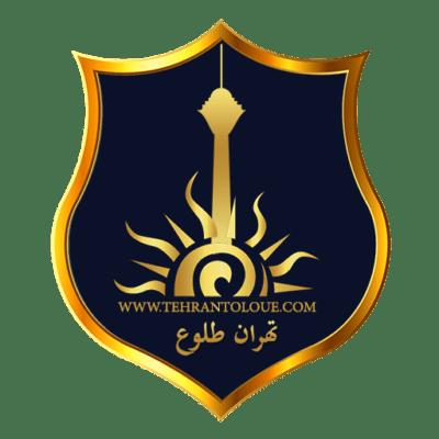 طراحی لوگو مستر حساب ایران